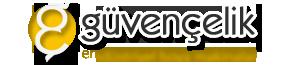 Güvençelik Toz Boya Tesisi Elektrostatik Toz Boya Kabini Toz Boya Fırını Boya Tabancası